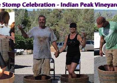 Press Release – Indian Peak Celebrates 5th Annual Grape Stomp Event